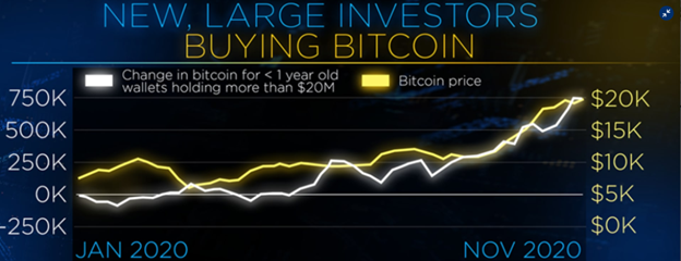 Chart of Large Investors Buying Bitcoin in 2020