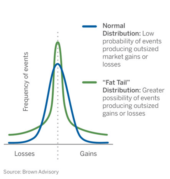 Hedge Fund Risk Management: Fat Tail Distribution